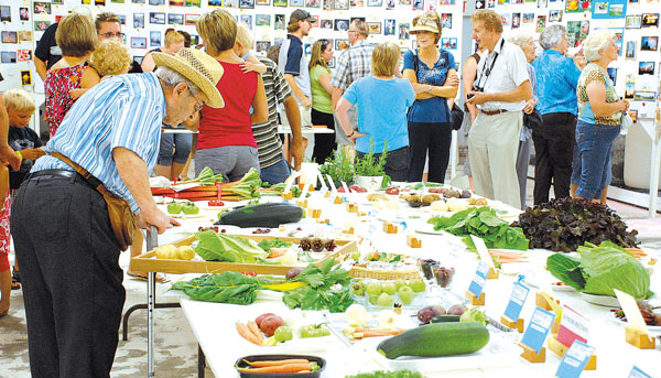 The bench exhibits continue to be a popular draw for many visitors to the Lougheed Fair, where little has changed except for the constantly expanding list of sections to enter under, where diligent volunteers adjust and add classes and sections with new categories.