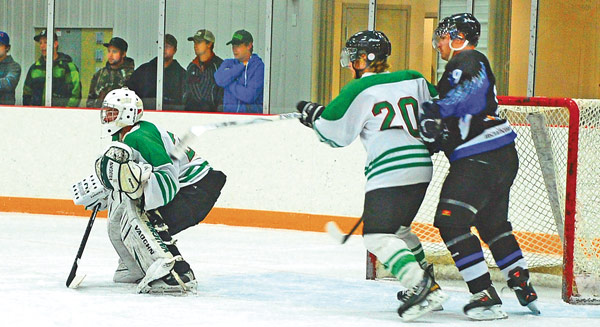 Fo-Flyers-2-game-Nov-5-13