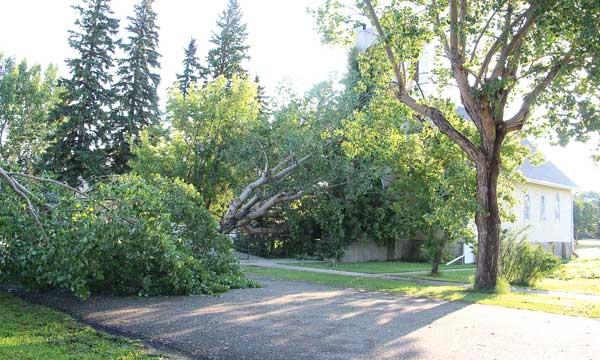 strome-storm-3-Aug-15-14